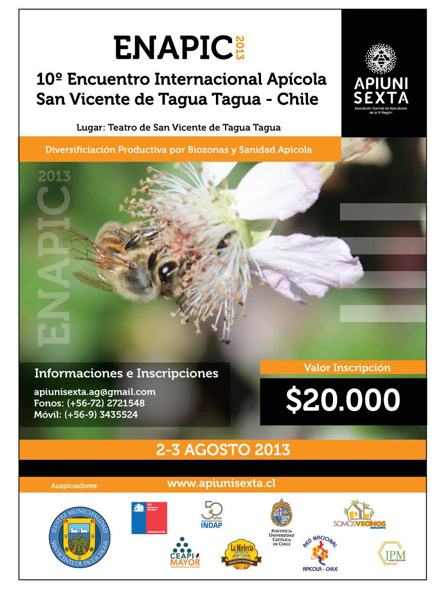 <!--:es-->APIUNISEXTA en San Vicente de Tagua Tagua <!--:-->