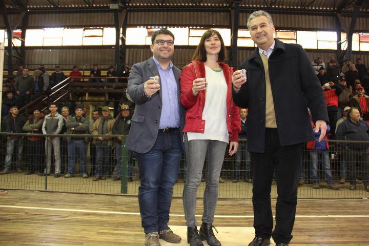 Primer Campeonato Regional de Rayuela en San Vicente de Tagua Tagua
