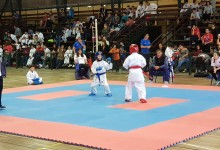 TORNEO OPEN DE KARATE-DO