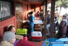 Se da comienzo a la Campaña de Esterilización Gratuita Canina y Felina 2018