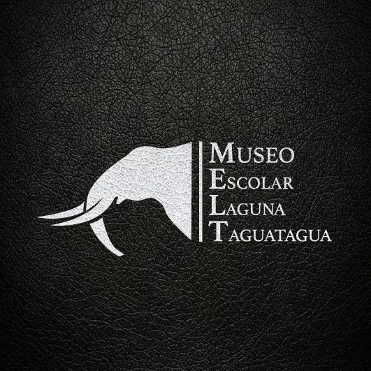 Fundación Añañuca informa a la comunidad el cierre temporal del Museo Escolar Laguna Taguatagua Melt