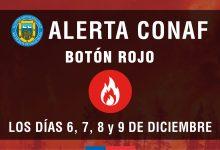 #ATENCIÓN | ALERTA CONAF PARA SAN VICENTE