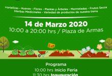 ASISTE AL PRIMER MERCADO CAMPESINO SAN VICENTE 2020